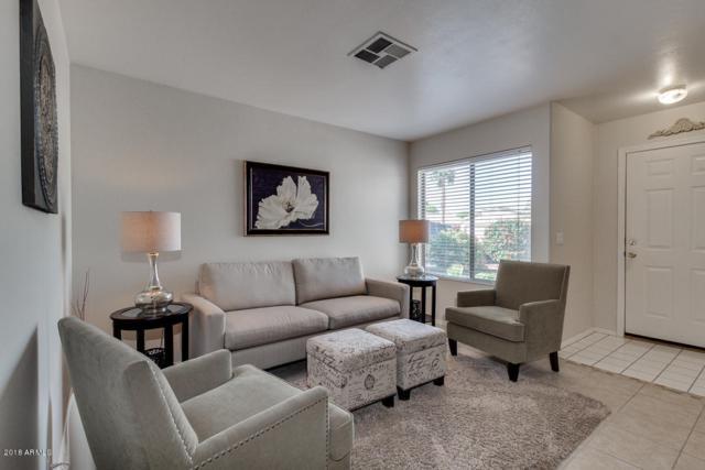 16510 N 158TH Avenue, Surprise, AZ 85374 (MLS #5757220) :: Essential Properties, Inc.