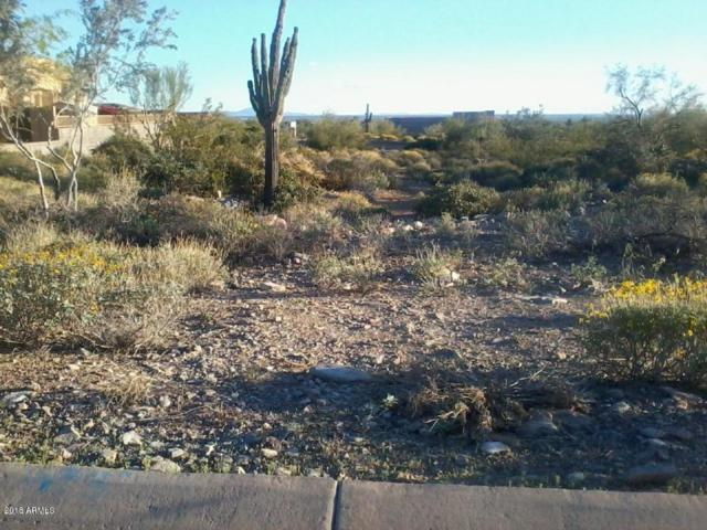 12175 E Mary Katherine Drive, Scottsdale, AZ 85259 (MLS #5763245) :: Yost Realty Group at RE/MAX Casa Grande