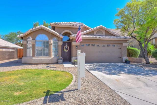 6630 W Saddlehorn Road, Phoenix, AZ 85083 (MLS #5764726) :: Occasio Realty