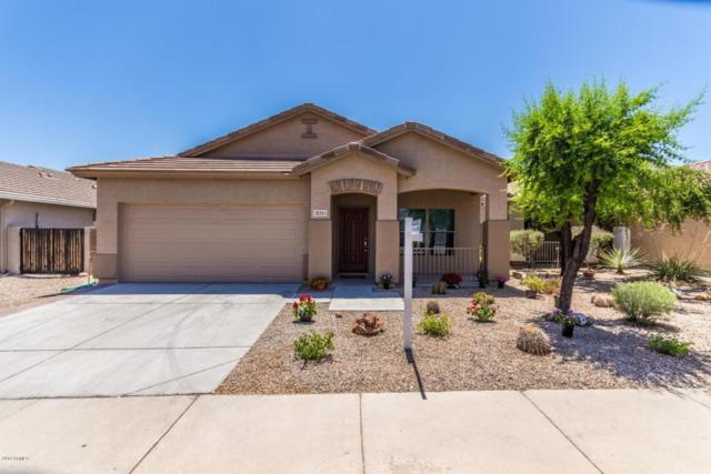 18261 E El Buho Pequeno, Gold Canyon, AZ 85118 (MLS #5767537) :: The Bill and Cindy Flowers Team