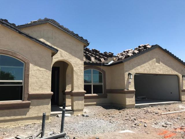 31081 N 133RD Avenue, Peoria, AZ 85383 (MLS #5768116) :: The W Group