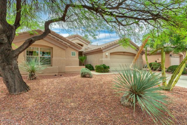 26202 N 43RD Court, Phoenix, AZ 85050 (MLS #5769205) :: My Home Group