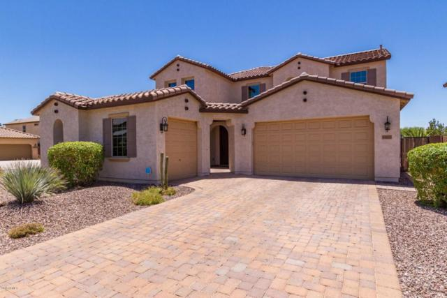 10833 E Ramblewood Circle, Mesa, AZ 85212 (MLS #5771532) :: My Home Group