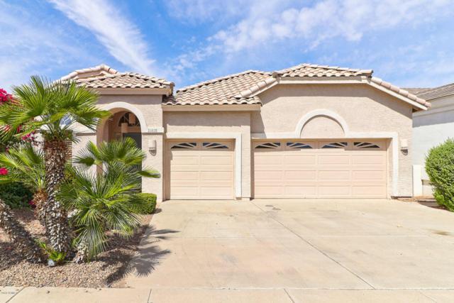 21420 N 56TH Avenue, Glendale, AZ 85308 (MLS #5771567) :: My Home Group
