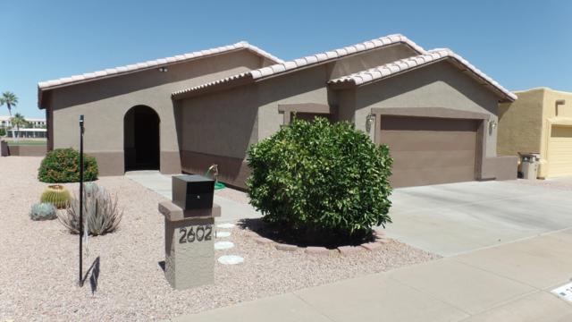 2602 N Lema Drive, Mesa, AZ 85215 (MLS #5772227) :: Arizona 1 Real Estate Team