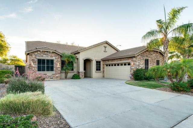 6630 S Nash Way, Chandler, AZ 85249 (MLS #5772490) :: The Everest Team at My Home Group