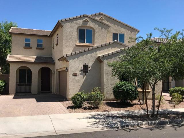 3006 E Ivanhoe Street, Gilbert, AZ 85295 (MLS #5775148) :: Essential Properties, Inc.