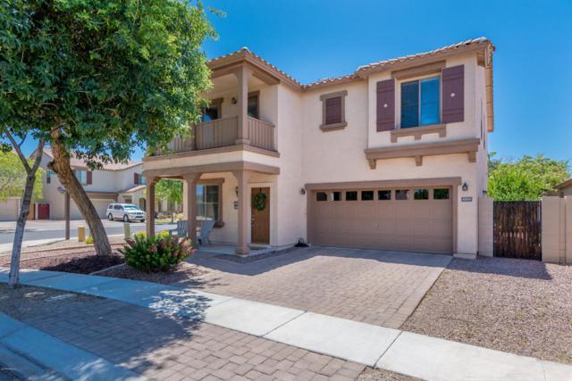 4569 E Del Rio Street, Gilbert, AZ 85295 (MLS #5775731) :: My Home Group