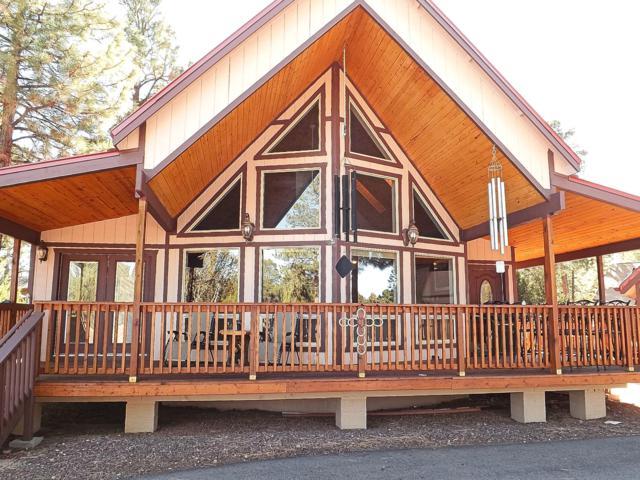 2946 Homestead Drive, Overgaard, AZ 85933 (MLS #5776839) :: Brett Tanner Home Selling Team