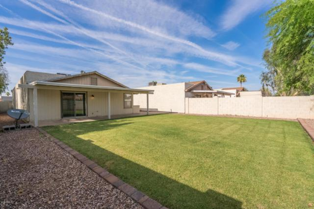 1775 W Colt Road, Chandler, AZ 85224 (MLS #5776963) :: The Everest Team at My Home Group