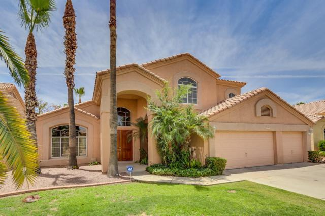 6271 W Linda Lane, Chandler, AZ 85226 (MLS #5777761) :: The Jesse Herfel Real Estate Group