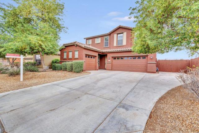 4198 N 154TH Drive, Goodyear, AZ 85395 (MLS #5781768) :: Occasio Realty