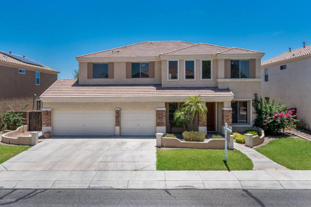 13017 W Campbell Avenue, Litchfield Park, AZ 85340 (MLS #5784767) :: Brent & Brenda Team