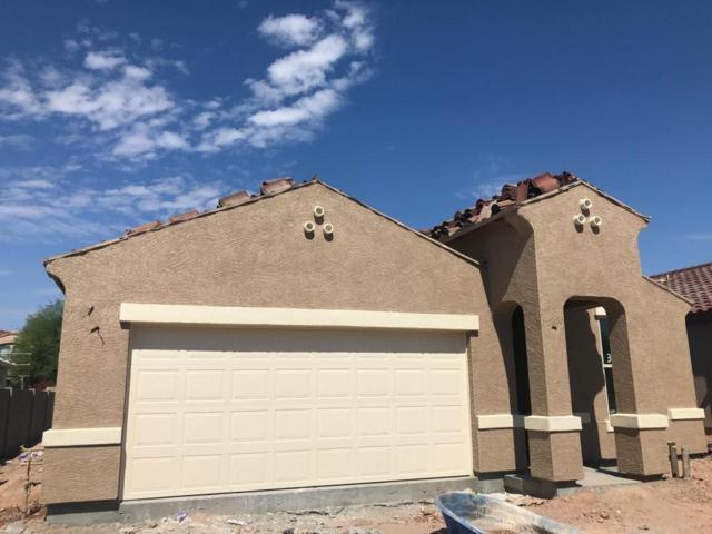 29762 N 120TH Lane, Peoria, AZ 85383 (MLS #5784923) :: Occasio Realty
