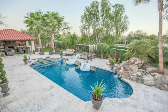 10038 N 96TH Way, Scottsdale, AZ 85258 (MLS #5785155) :: RE/MAX Excalibur