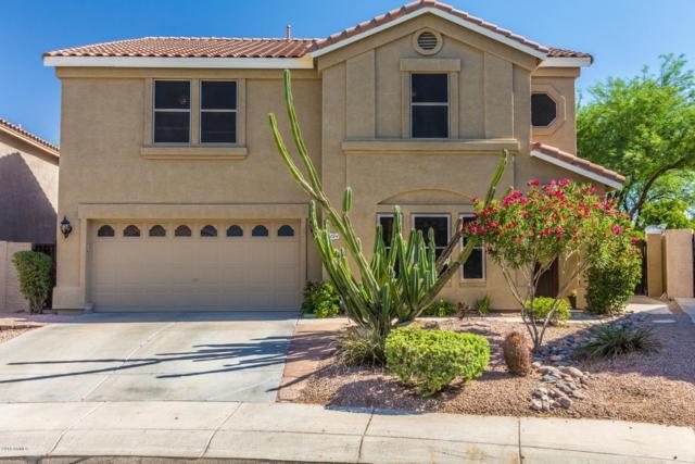 4134 E Pinto Lane, Phoenix, AZ 85050 (MLS #5785440) :: The Garcia Group @ My Home Group