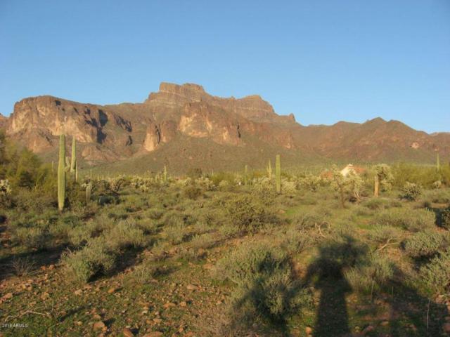 6040 E Roosevelt Street, Apache Junction, AZ 85119 (MLS #5785752) :: Yost Realty Group at RE/MAX Casa Grande