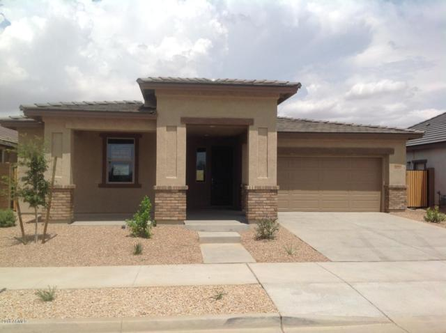 22800 E Via Las Brisas Road, Queen Creek, AZ 85142 (MLS #5786133) :: CC & Co. Real Estate Team
