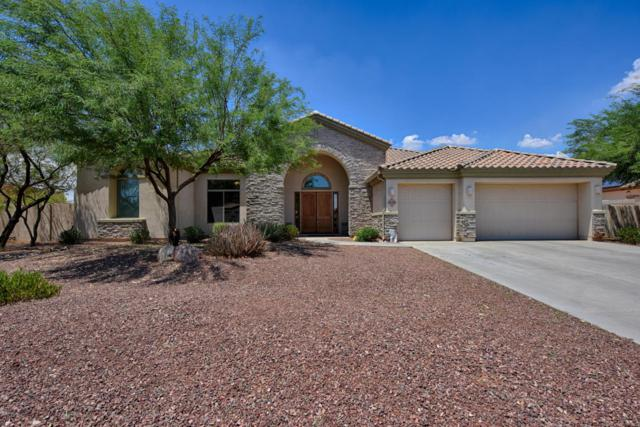 18326 W Montebello Avenue, Litchfield Park, AZ 85340 (MLS #5786870) :: Yost Realty Group at RE/MAX Casa Grande