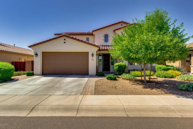 378 W Sweet Shrub Avenue, Queen Creek, AZ 85140 (MLS #5786889) :: Kortright Group - West USA Realty