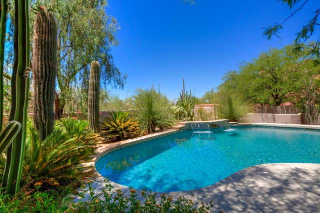 7687 E Mary Sharon Drive, Scottsdale, AZ 85266 (MLS #5786963) :: Occasio Realty