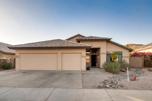 1618 E Montoya Lane E, Phoenix, AZ 85024 (MLS #5787559) :: The W Group