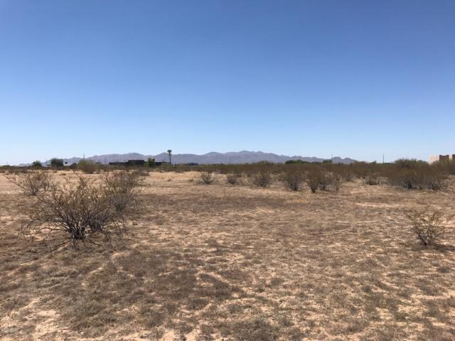 289XX N 253rd Lane, Wittmann, AZ 85361 (MLS #5788121) :: Brett Tanner Home Selling Team