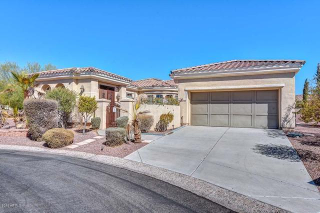 23128 N Sol Mar Court, Sun City West, AZ 85375 (MLS #5789632) :: Scott Gaertner Group