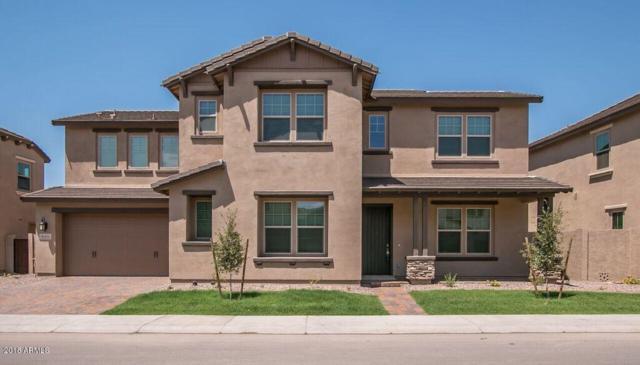 940 W Yosemite Drive, Chandler, AZ 85248 (MLS #5791546) :: The Daniel Montez Real Estate Group