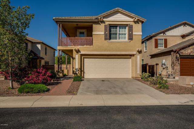 3694 N 292ND Lane, Buckeye, AZ 85396 (MLS #5794069) :: Lux Home Group at  Keller Williams Realty Phoenix