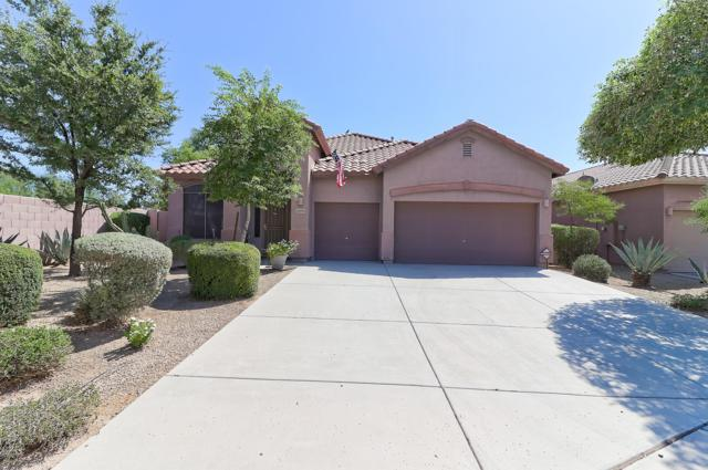 13610 W Caribbean Lane, Surprise, AZ 85379 (MLS #5794433) :: Arizona 1 Real Estate Team