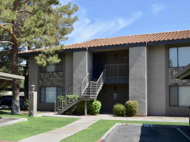1402 E Guadalupe Road #149, Tempe, AZ 85283 (MLS #5796537) :: Keller Williams Realty Phoenix