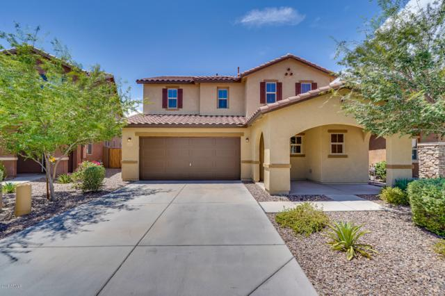11911 W Honeysuckle Court, Peoria, AZ 85383 (MLS #5796884) :: The Results Group