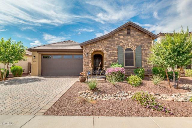 9731 W Los Gatos Drive, Peoria, AZ 85383 (MLS #5797370) :: Arizona 1 Real Estate Team