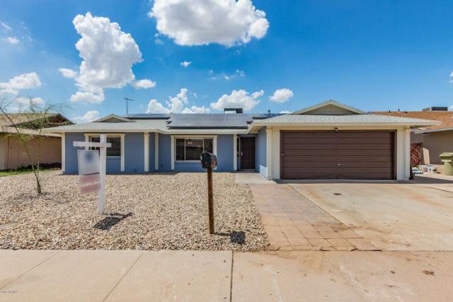 14422 N 51ST Lane, Glendale, AZ 85306 (MLS #5800876) :: The Property Partners at eXp Realty