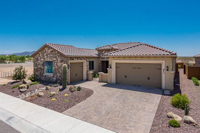 27501 W Yukon Drive, Buckeye, AZ 85396 (MLS #5800994) :: The Results Group