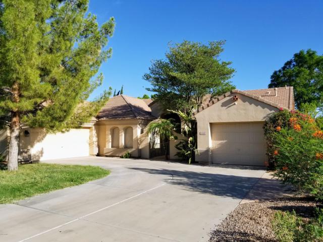 5519 E Harmony Avenue, Mesa, AZ 85206 (MLS #5801098) :: The Property Partners at eXp Realty