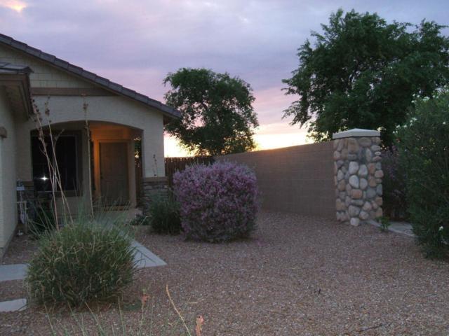 35266 N Happy Jack Drive, Queen Creek, AZ 85142 (MLS #5801629) :: The W Group
