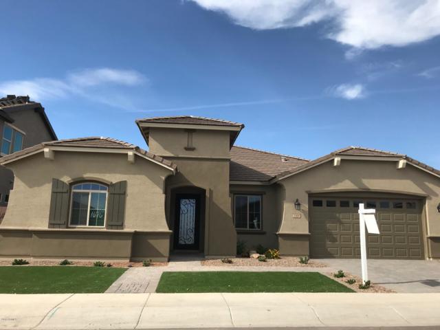 1168 W Pagoda Avenue, Queen Creek, AZ 85140 (MLS #5802906) :: Revelation Real Estate