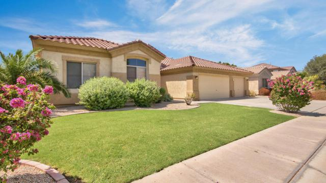 1371 W Hawken Way, Chandler, AZ 85286 (MLS #5803595) :: The W Group
