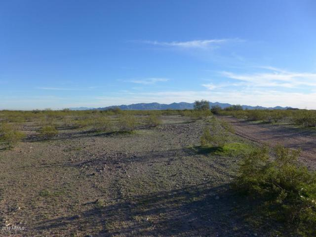 310XX N 235th Avenue, Wittmann, AZ 85361 (MLS #5804061) :: The Ellens Team