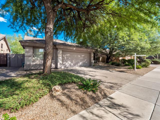 15611 N 65th Street, Scottsdale, AZ 85254 (MLS #5804330) :: My Home Group