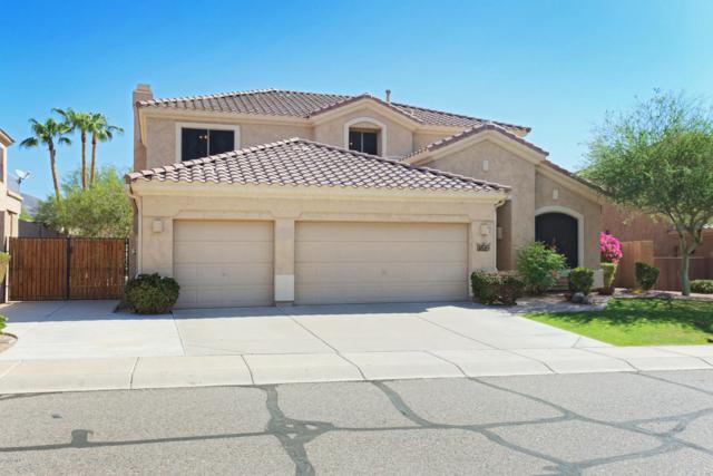 1614 W Amberwood Drive, Phoenix, AZ 85045 (MLS #5806726) :: The Everest Team at My Home Group