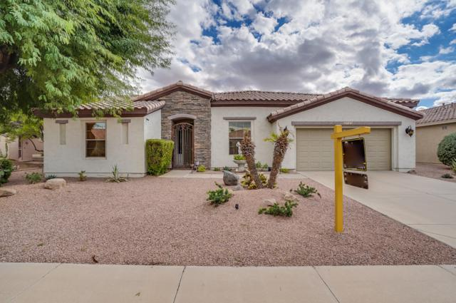 4743 E Jude Court, Gilbert, AZ 85298 (MLS #5807227) :: The Garcia Group @ My Home Group