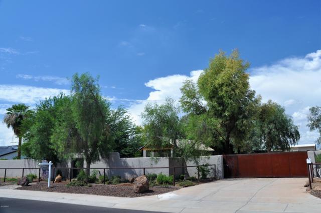 3724 E Tierra Buena Lane, Phoenix, AZ 85032 (MLS #5807512) :: CC & Co. Real Estate Team
