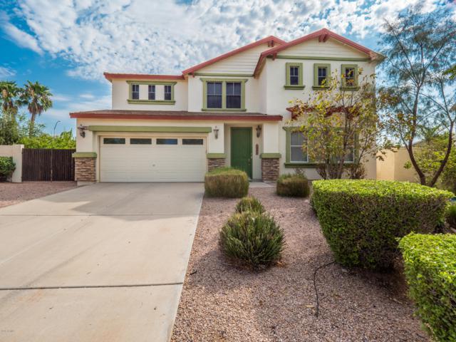 10528 E Olla Avenue, Mesa, AZ 85212 (MLS #5807833) :: Keller Williams Realty Phoenix