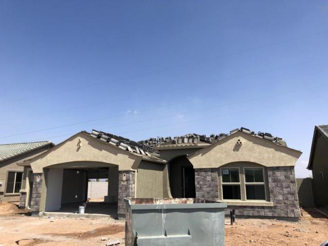 4921 S Brice Circle, Mesa, AZ 85212 (MLS #5809338) :: Occasio Realty