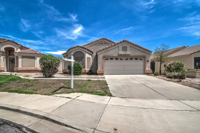 1047 N 91ST Place, Mesa, AZ 85207 (MLS #5810621) :: The Garcia Group