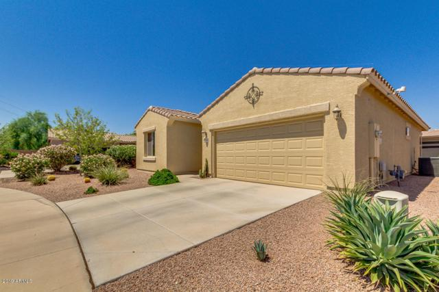 42562 W Sea Eagle Drive, Maricopa, AZ 85138 (MLS #5810764) :: Yost Realty Group at RE/MAX Casa Grande