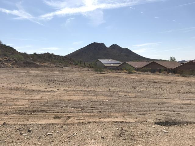 6555 W Gold Mountain Pass, Phoenix, AZ 85083 (MLS #5810991) :: Team Wilson Real Estate